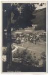 AK Tonbach mit Gasthof zur Traube bei Baiersbronn 1936