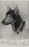 Künstler-AK Schäferhund Original von Anton Braith 1911