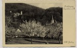 AK Foto Seeheim Jugenheim an der Bergstraße Frühlingstag Wilh. Gerling 1940