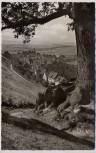 AK Foto Schwalenberg in Lippe Ortsansicht vom Baum 1957