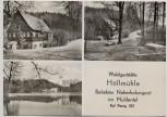 AK Foto Mehrbild Waldgaststätte Höllmühle im Muldental b. Penig 1977