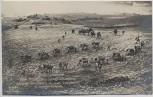 AK Foto Original Aufnahme vom feindlichen Kriegsschauplatz Schottische Gebirgsbatterie 1. WK Verlag Gustav Liersch 1915 RAR