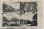 AK Mehrbild Gruss aus dem Glüsing bei Schnakenbek Lauenburg Elbe 1902 RAR