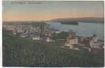 AK Rüdesheim am Rhein Gesamtansicht 1920