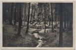 AK Foto Marnitz in Mecklenburg Quelle am Ruhner Berg b. Ziegendorf Parchim 1940