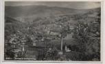 AK Foto Tannwald Schumburg Ortsansicht mit Fabrik Tanvald Šumburk nad Desnou Böhmen Tschechien 1933